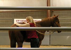 Equine Massage Clinic