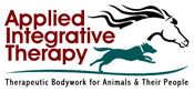 Applied Integrative Therapy